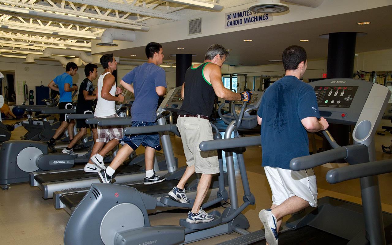 Jcc Fitness Schedule Toronto Blog Dandk