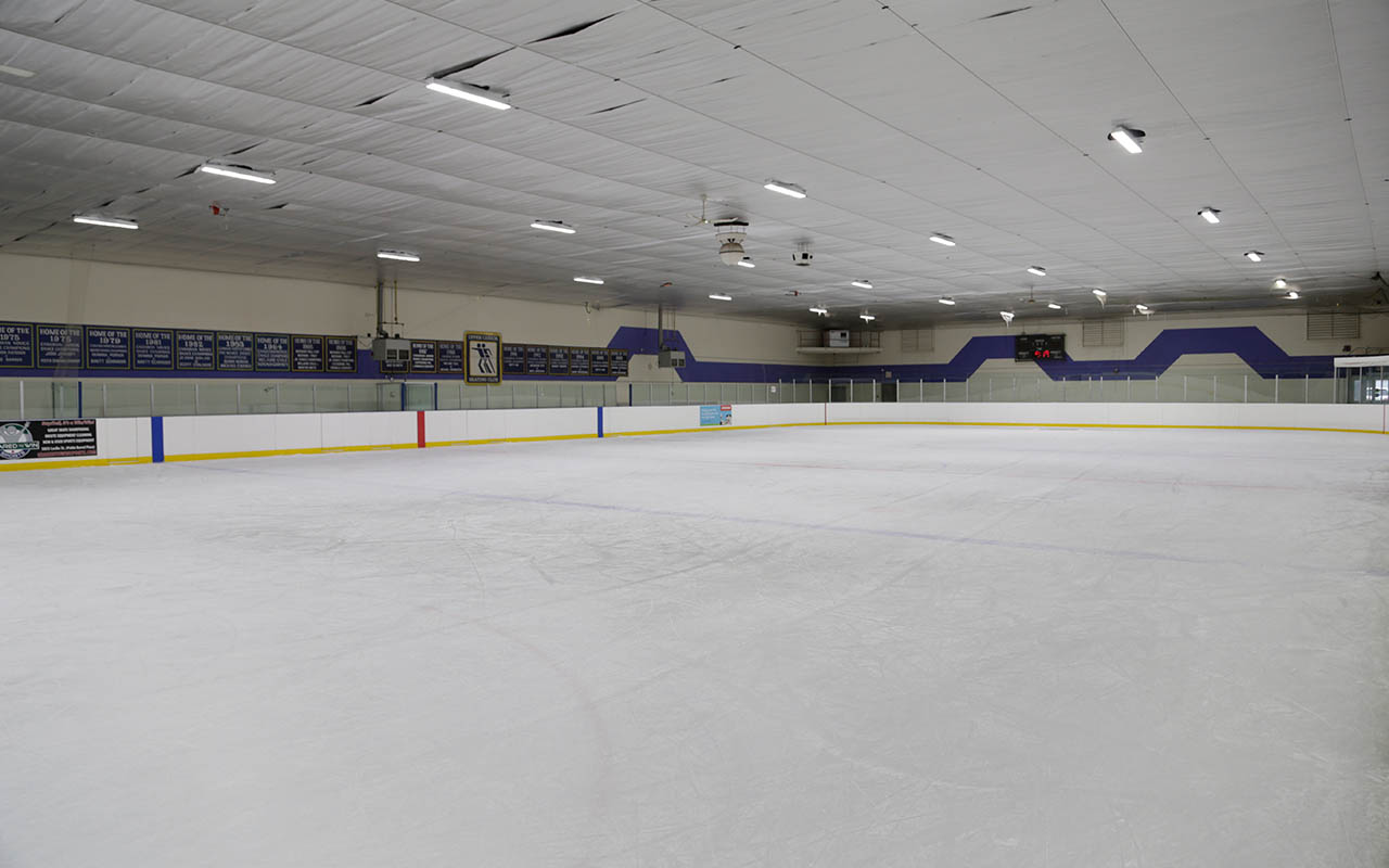 Image result for mitchell field skating rink