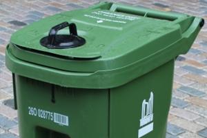 Green Bin - new occupant