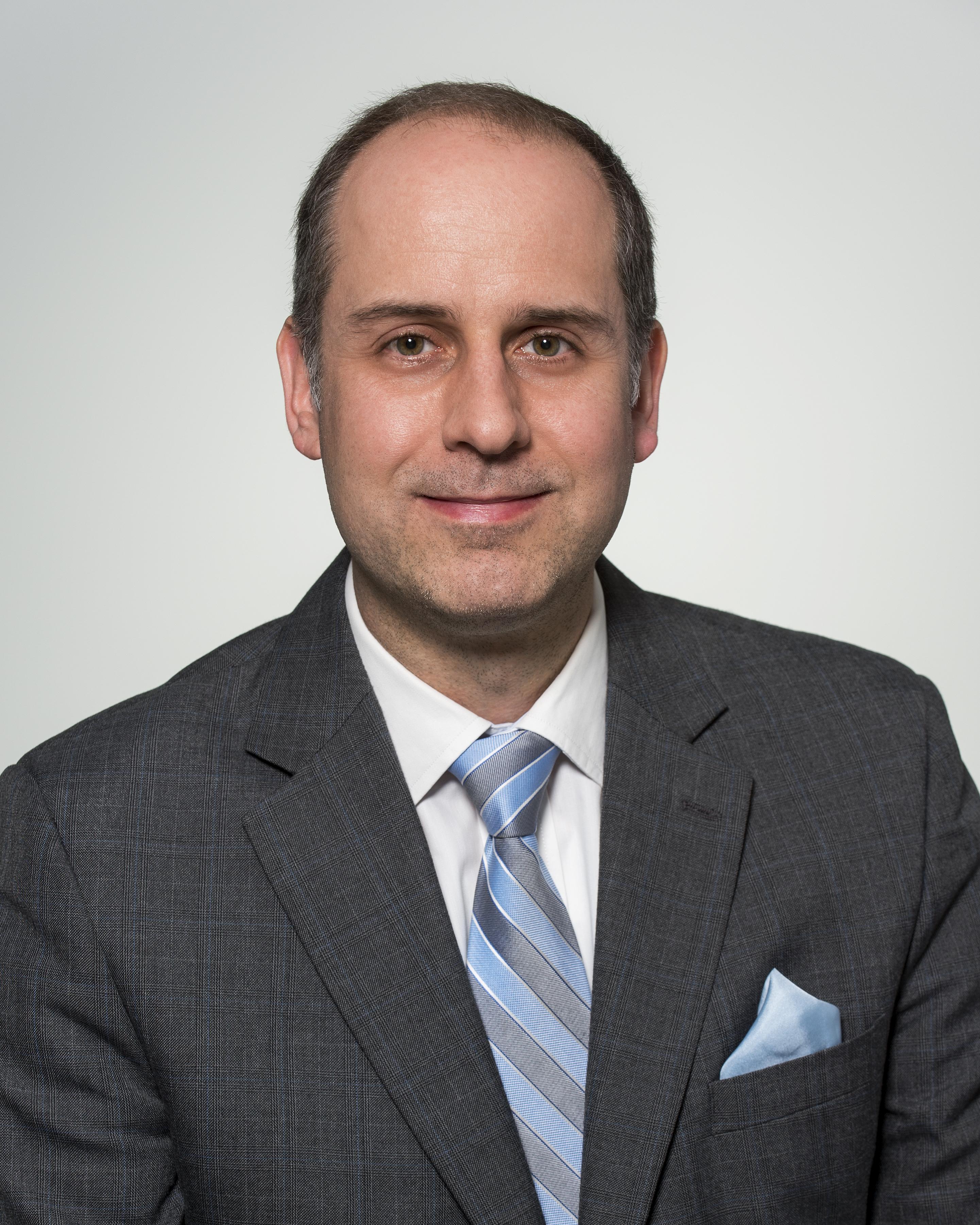 Councillor Stephen Holyday's portrait