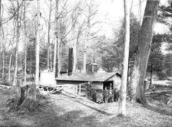 Salmon 1191 Sugar Camp EY