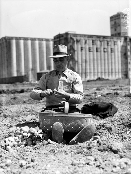 A man sits on the dirt with a basket in his lap. He appears to be cutting potatoes in pieces to plant.