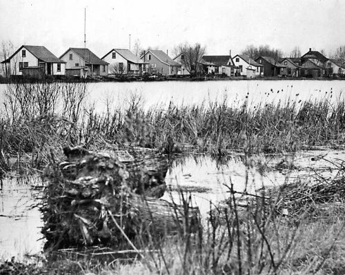 Small lakefront cottages seen across water and swamp