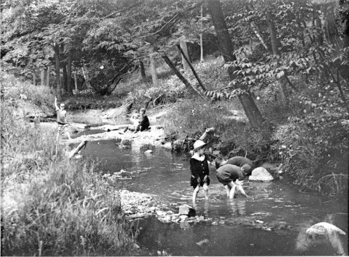Children playing in a creek surrounded by trees
