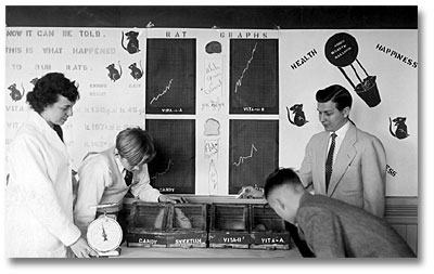 A teacher and teenagers look at rats in cages underneath a wall display explaining the rat feeding experiment.