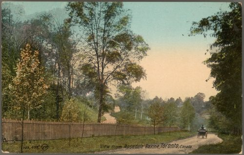 Colour image of road, trees and fence in ravine park.