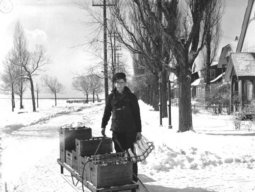 On a snowy road, a smiling young man takes a basket of milk bottles from a sleigh