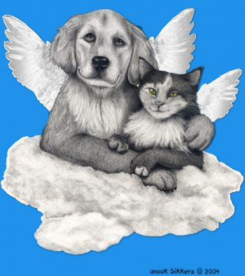 dog and cat with angel wings