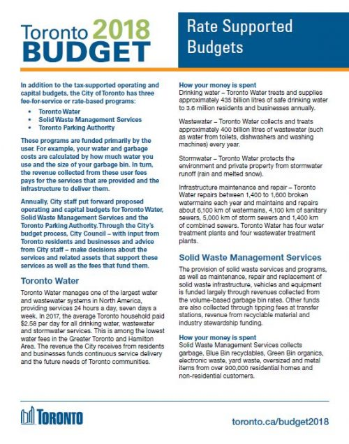 Image of Rate Supported Budgets Brochure