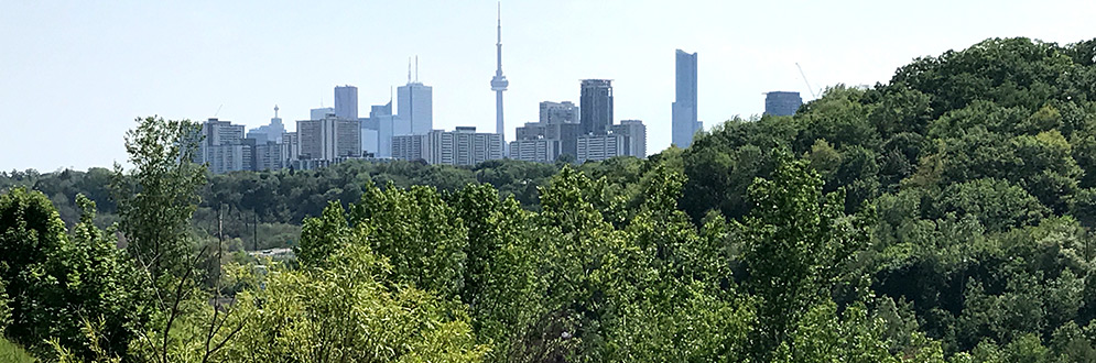 An image of the Toronto skyline with the natural areas of the Don Valley in the foreground