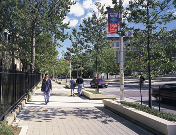 A portion of St. George Street is identified as a Special Area because it is within an educational campus.