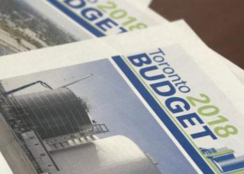 Budget Basics Publications cover 2018