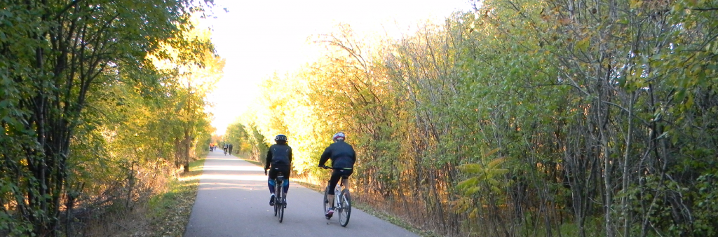 Two cyclists on a sunny trail lined by trees on both sides.
