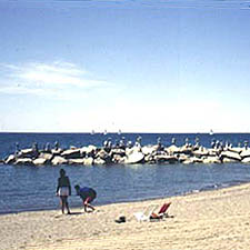Image of the beaches in Toronto