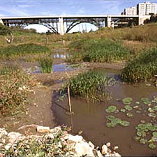 Image of the Don Valley River
