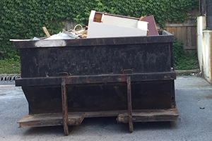 Waste or dumping on private property
