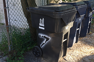 Property standards investigation - garbage storage