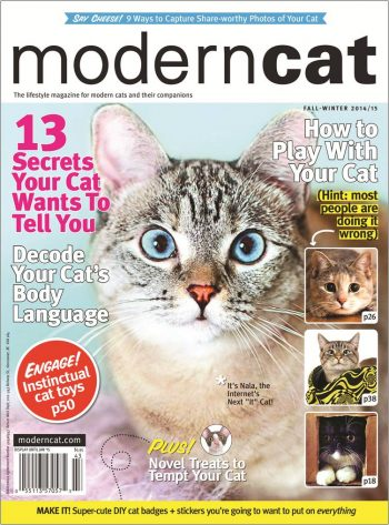 image of modern cat magazine cover