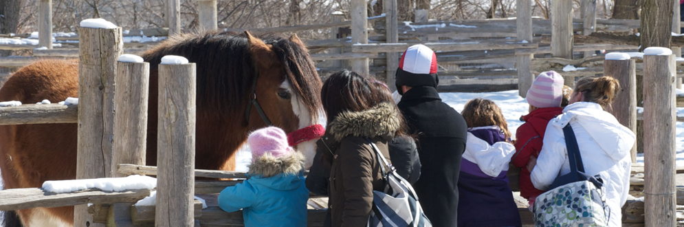 Family Day at Riverdale Farm