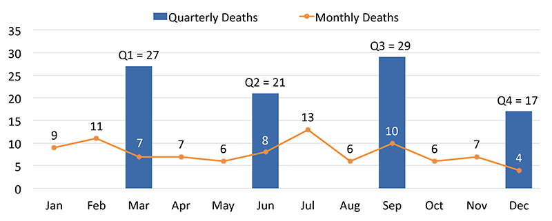 Graph shows the number of homeless deaths per quarter and per month. Q1 = 27, Q2 = 21, Q3 = 29, Q4 = 17.