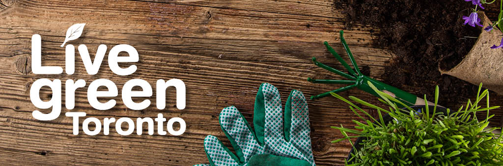 Seasonal banner, Spring 2018. Live Green Toronto logo on a table with a gardening glove, soil, plant pot, and plants.