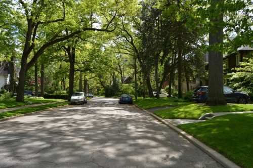 This is a photograph showing the streetscape view of Baby Point Crescent