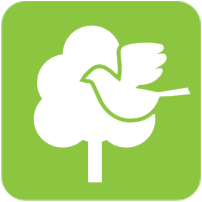 Toronto Green Standard Ecology Icon