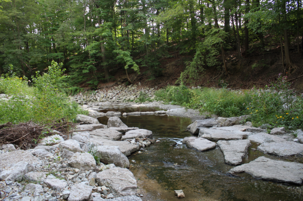 After picture of Humber Creek with stones along the perimeter