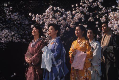 Image info: Makioka Sisters (Janus).