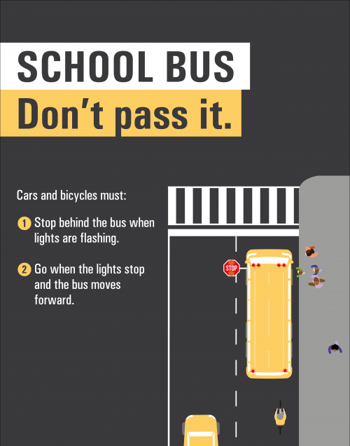 School Bus: Don't pass it. Cars and bicycles must: Stop behind the bus when lights are flashing. Go when the lights stop and the bus moves forward.