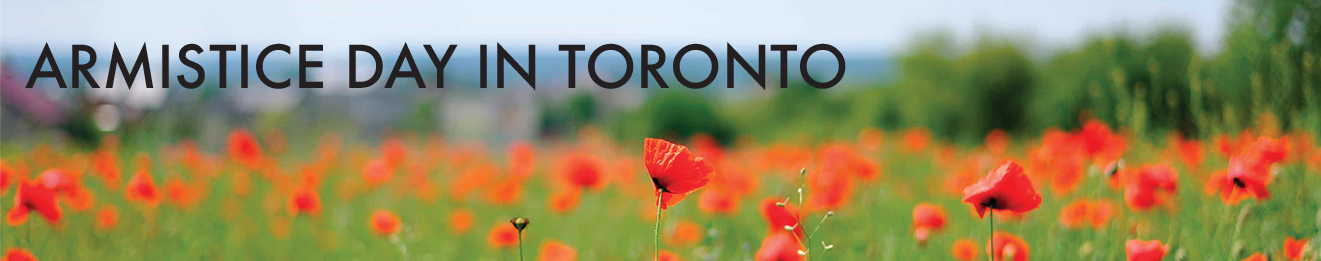 Armistice Day in Toronto web exhibit title banner, displaying a field of poppies