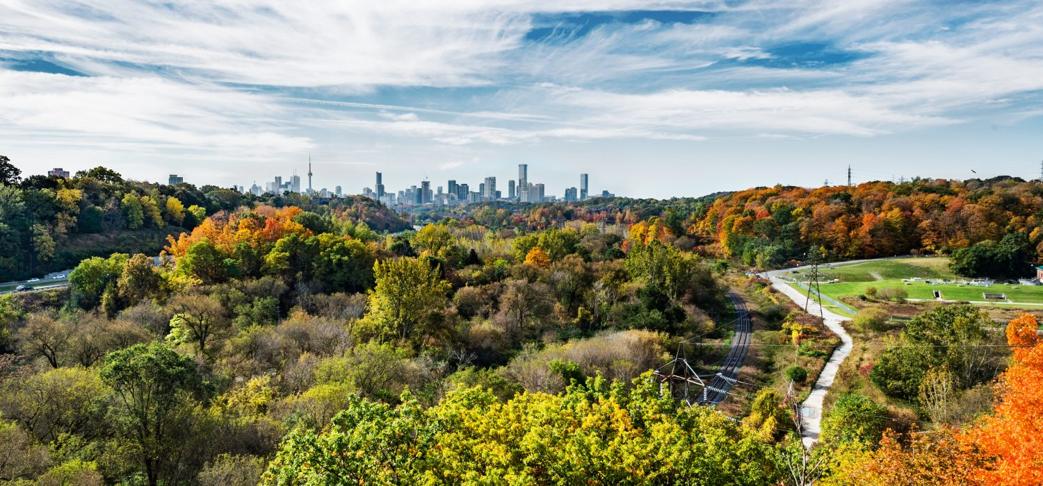 Fall colours in the Don Valley by Matt Forsythe - The photo was taken from the Millwood Road Bridge, facing south.
