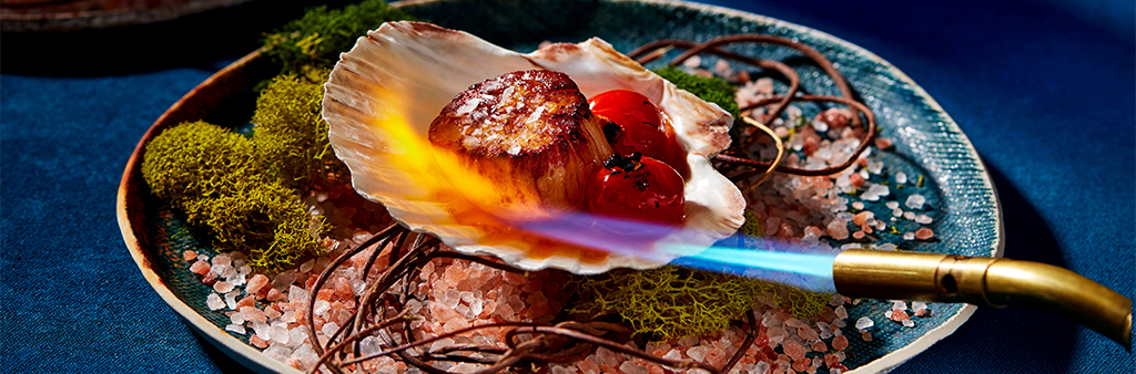 Sea scallop on a shell seared by a blow torch flame