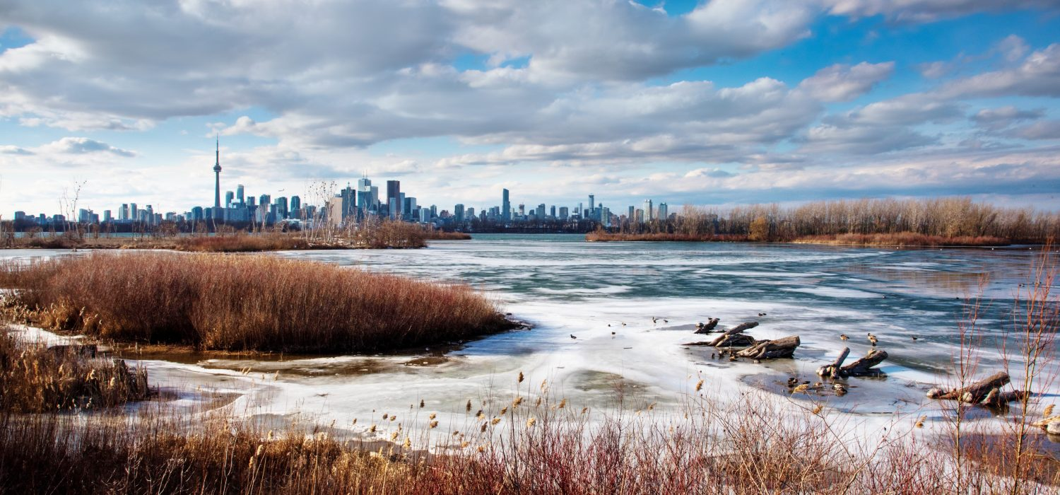 Tommy Thompson Park, looking across the lake at Toronto's skyline