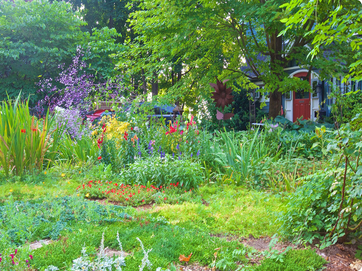 A house with a red door peeks from behind a garden suited for pollinators
