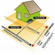 Graphic of a home and watermains.