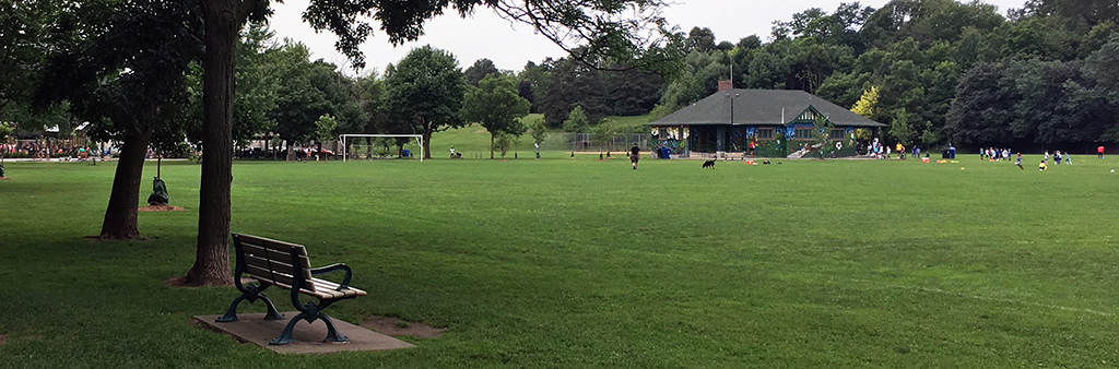 A picture of the park in 2019, with a bench in the foreground and people playing soccer in the background
