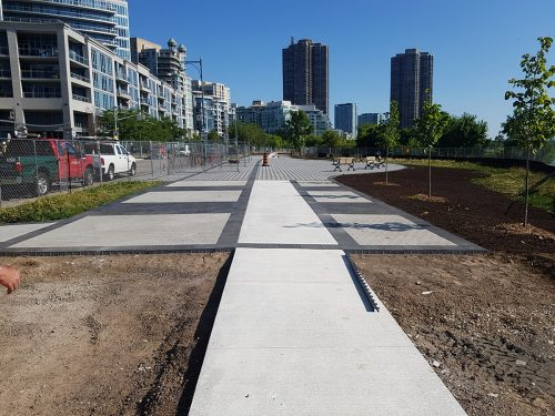The unfinished pathway is bordered by newly planted trees