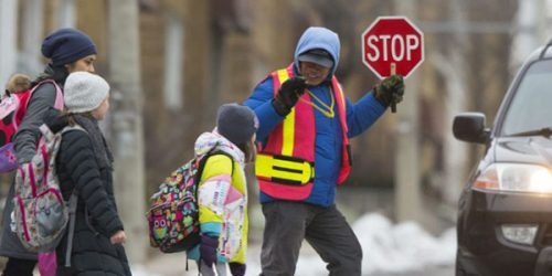Crossing guard helps students safely cross the street to school.
