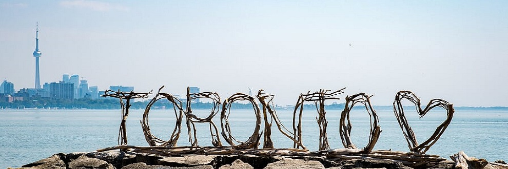 Driftwood sculpture spelling the word Toronto, with the Toronto skyline in the background