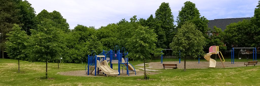 Diana Park's playground, with trees in the background