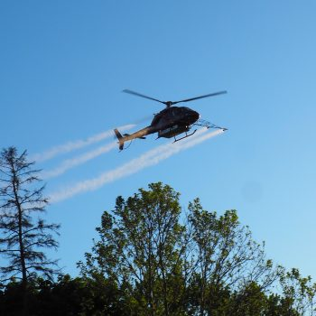 A helicopter flies through the sky, dispersing Btk in four white streams.