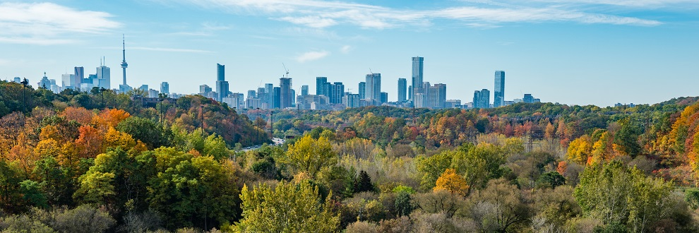 Credit - Matt Forsythe. Autumn colours in the Don Valley Ravine with the City of Toronto landscape in the background.