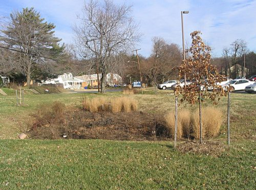 An example of a bioretention unit in the middle of a grassy area