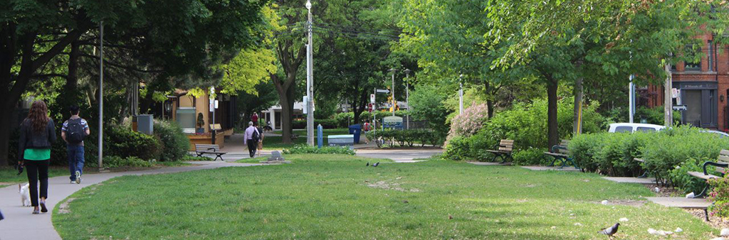 A wide photograph of Norman Jewison Park, one of the parks along Yonge Street that are being improved.