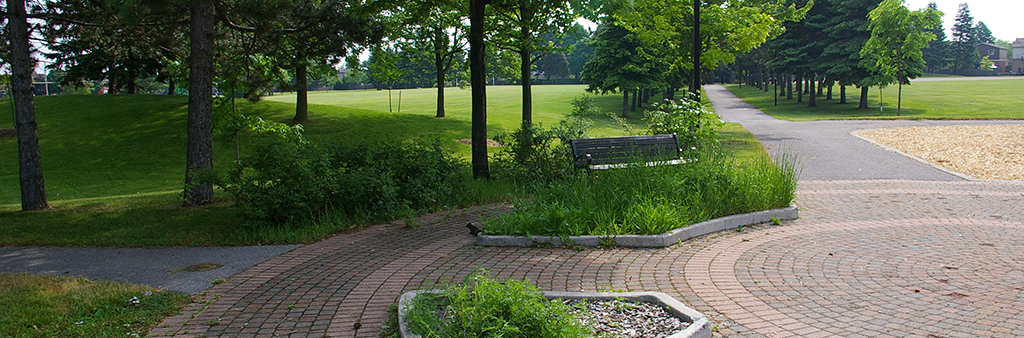 Viola Desmond Park's pathway, lined with trees and grass.