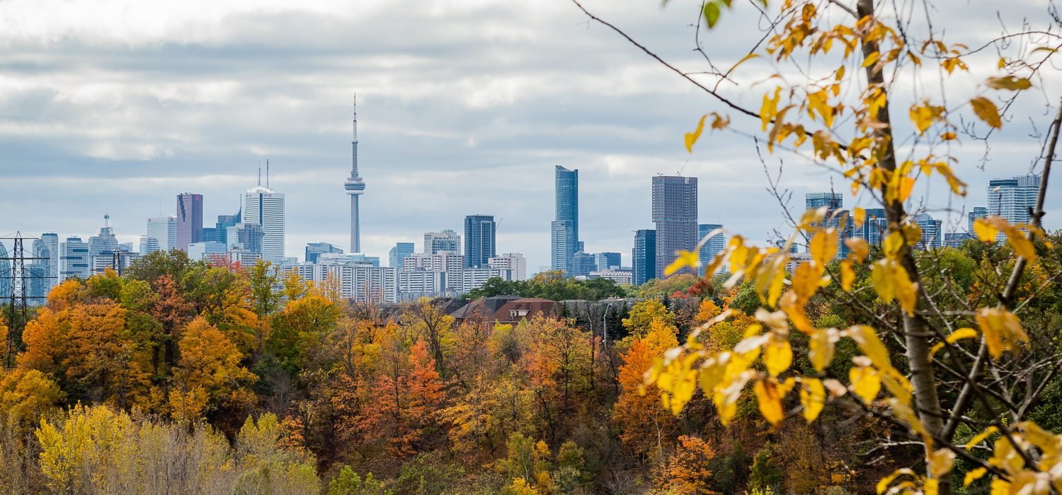 View of Toronto skyline, Don Valley Ravine in Autumn, looking south from Crothers Woods.