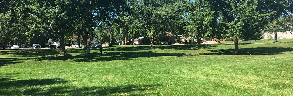 Scarlett Mills Park is a stretch of rolling grass and trees.