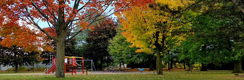 The playground surrounding by trees during fall.