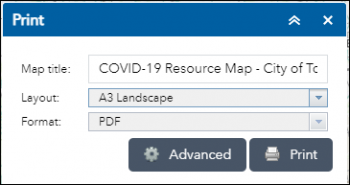 Display of the default print Menu showing Map Title (COVID-19 Resources Map), Layout(A4) and Format(pdf)